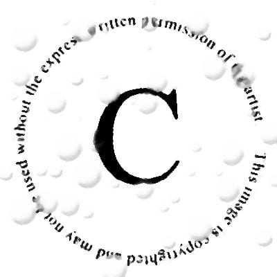 Blog Copyright Guidelines