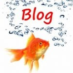 Different Ways Kids Learn to Blog